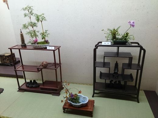 DSC_仙0874.JPG